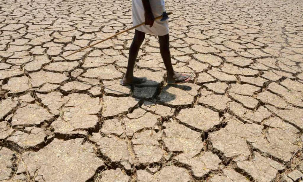 Il surriscaldamento del pianeta renderà invivibili le regioni tropicali