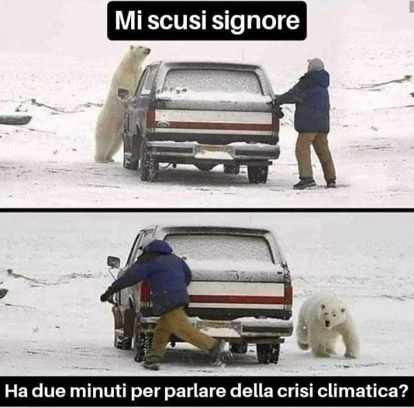 circolo polare artico meme